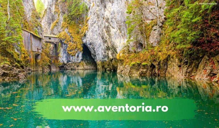 www.aventoria.ro