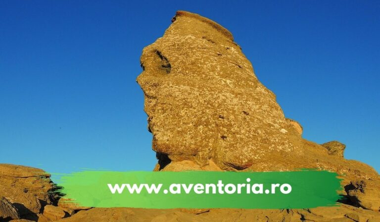 sfinx aventoria
